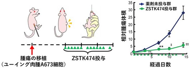 ZSTK474_2